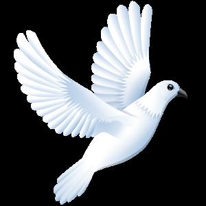 Dove-Open Clip Art