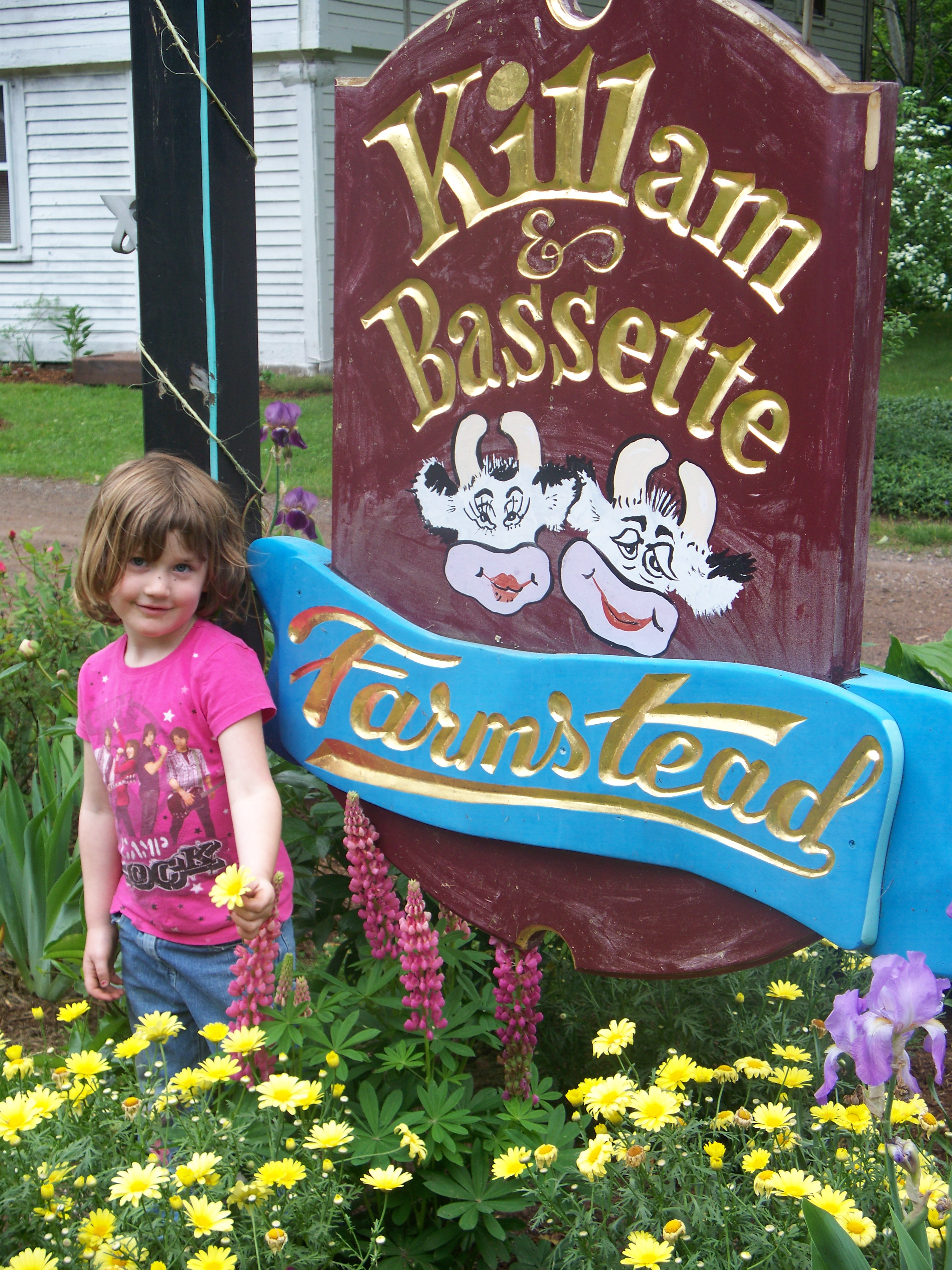 Killam & Bassette Farmstead-appears with permission