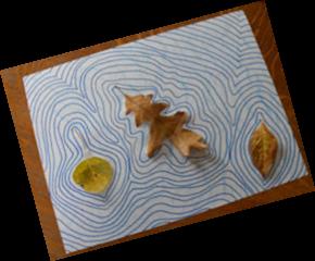 Concentric Leaf Shapes Craft