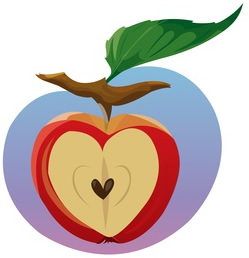 Heart-Shaped Apple with Seeds-copyrighted image