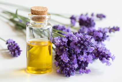 Lavender and Essential Oil-copyrighted image