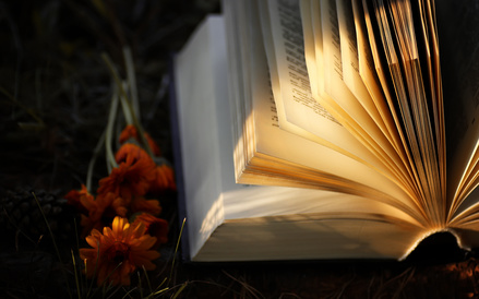 Open Book in Autumn Light-copyright alexkich/Fotolia.com