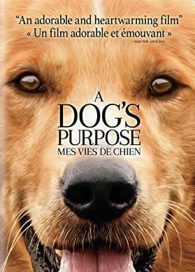 A Dog's Purpose DVD Cover