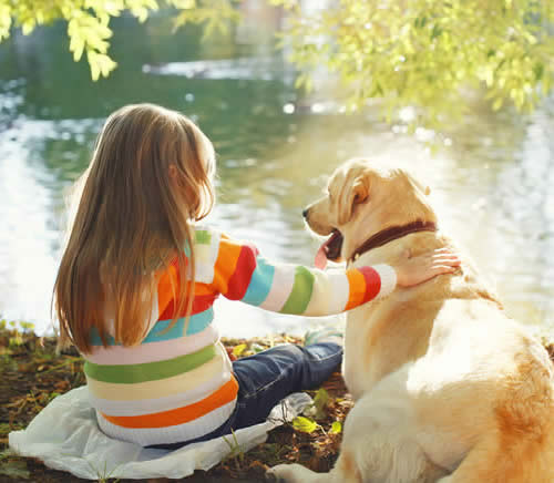 Girl and Yellow Lab-copyright rohappy/Fotolia.com