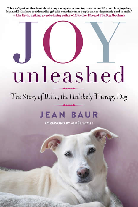 Joy Unleashed Book Cover